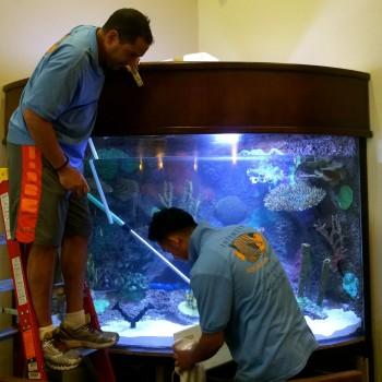 Aquarium cleaning service in las vegas